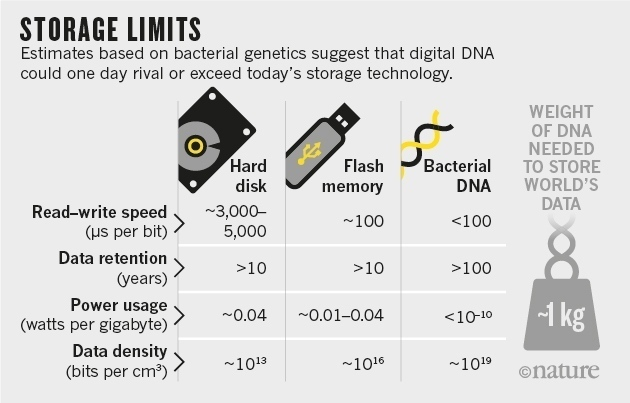 dna storage limits